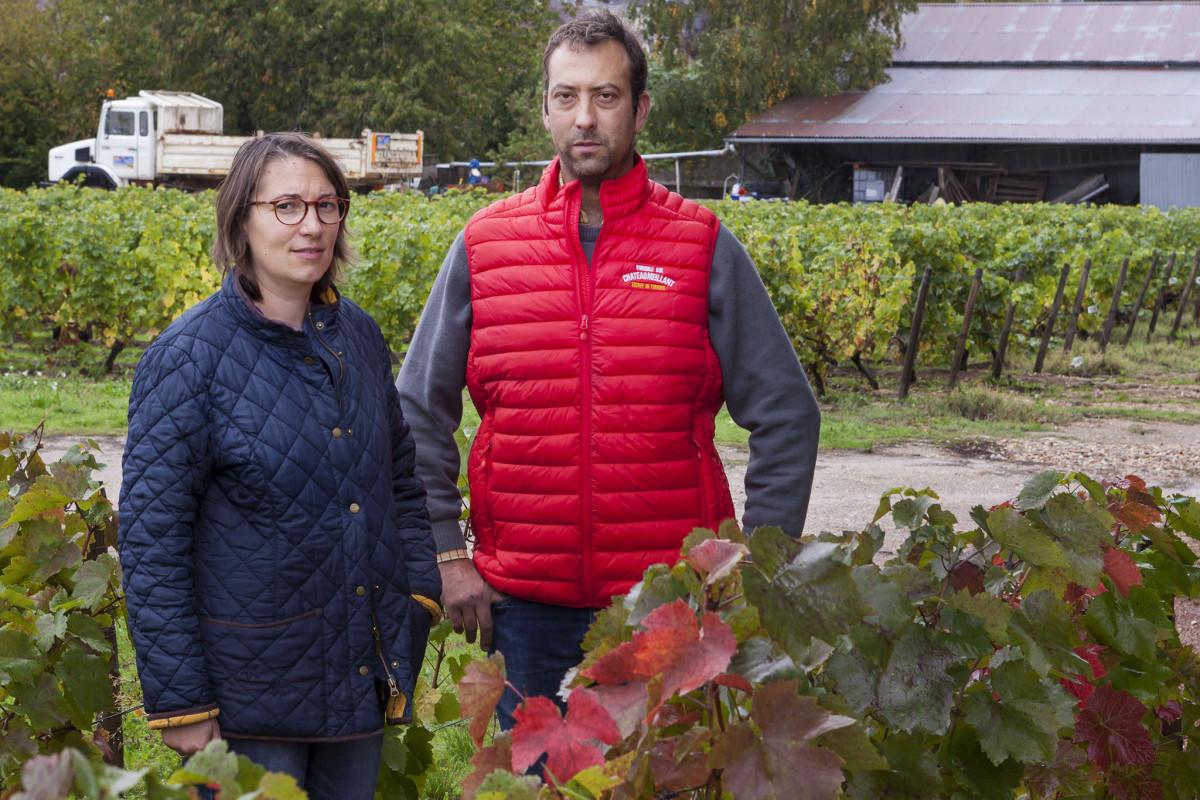 Wijnwerk, wijnmakers, Adèle, Côme, Rouzé, Quincy, Sauvignon, Pinot Noir, wijnmakers familie